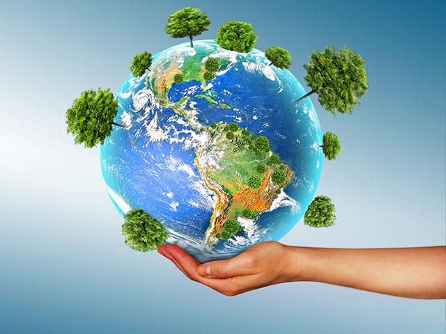 מה הקשר בין פינוי דירה לאיכות הסביבה?